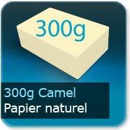 Cartes de correspondance 300g papier camel Noble