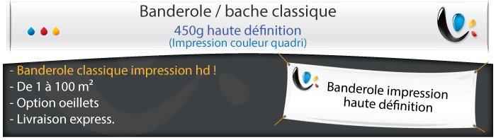 banderole publicitaire 450g classic