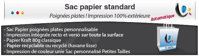 Sac Publicitaire Sac Papier poignées plates - Impression totale éxterieur